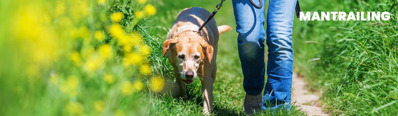 hundeschule - manmantrailing - Hundeschule
